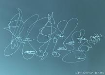 Giseh Signaturen/Giseh Signaturen8.jpg (original)